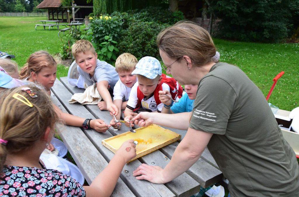 Heideimkerei im Emsland Moormuseum – Bienenpfad
