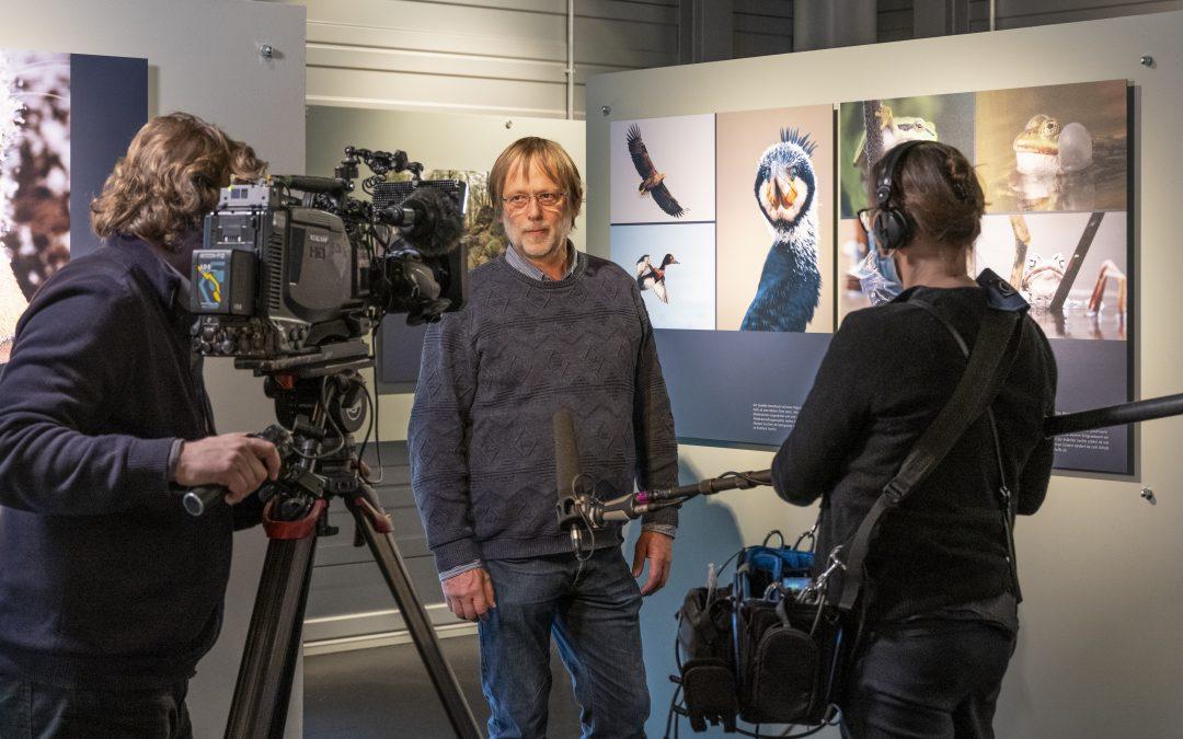 Wildnis Niedersachsen eröffnet ! Trailer zur Ausstellung online.